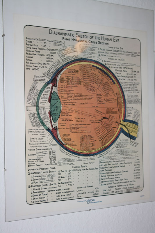 kontaktlinsen_poster